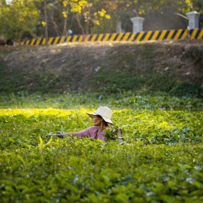 Essere donna in Cambogia